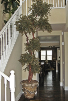 Photo of Silk Locust Tree Custom Built by Dei-Zinz to Perfect Fit